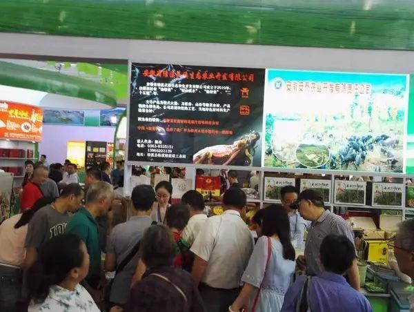 宣城展团合肥农交会3天共销售228万元,比去年同比增长10.1%