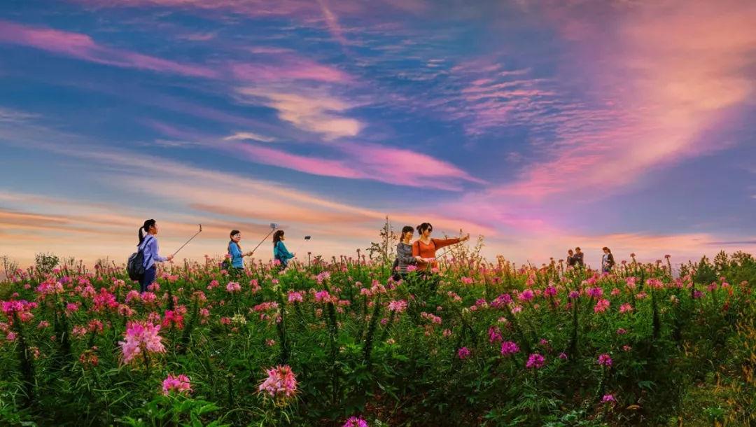 按照计划,官塘湖生态旅游风景区二期项目将开放官塘湖精心打造的超五
