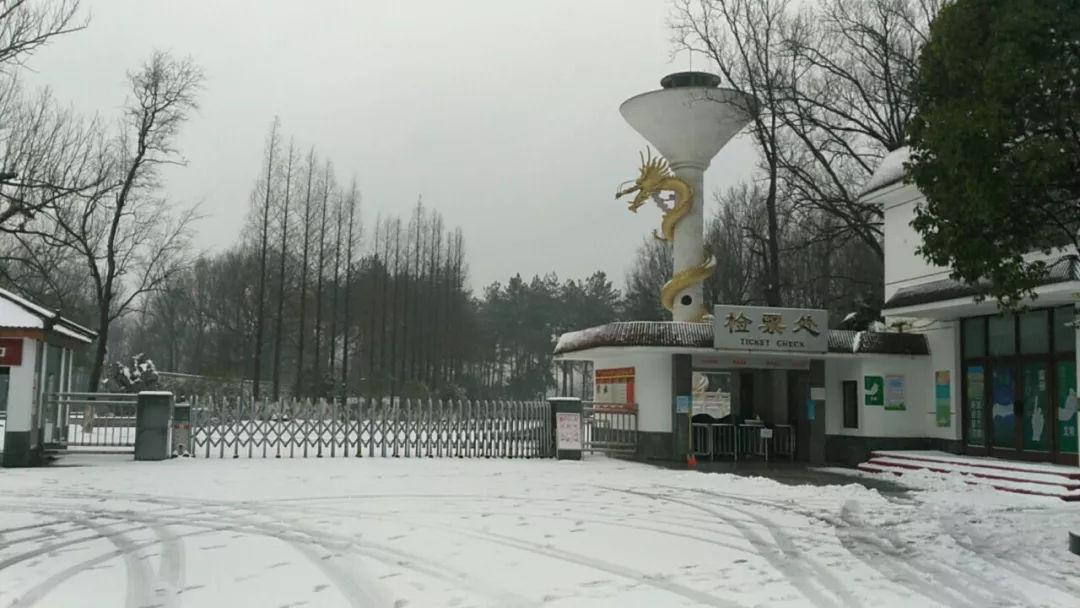 """暴雪致宣城44家景区暂时关闭 """"皖南川藏线""""桃岭公路封闭"""