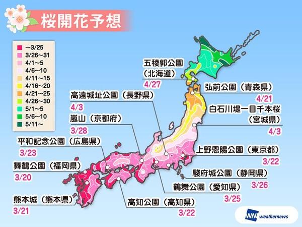 ▲▼日本赏樱预测。(图/取自日本气象网站Wether News)