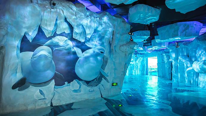 蕪湖新華聯大白鯨海洋公園每個項目演出時間是什么時候?